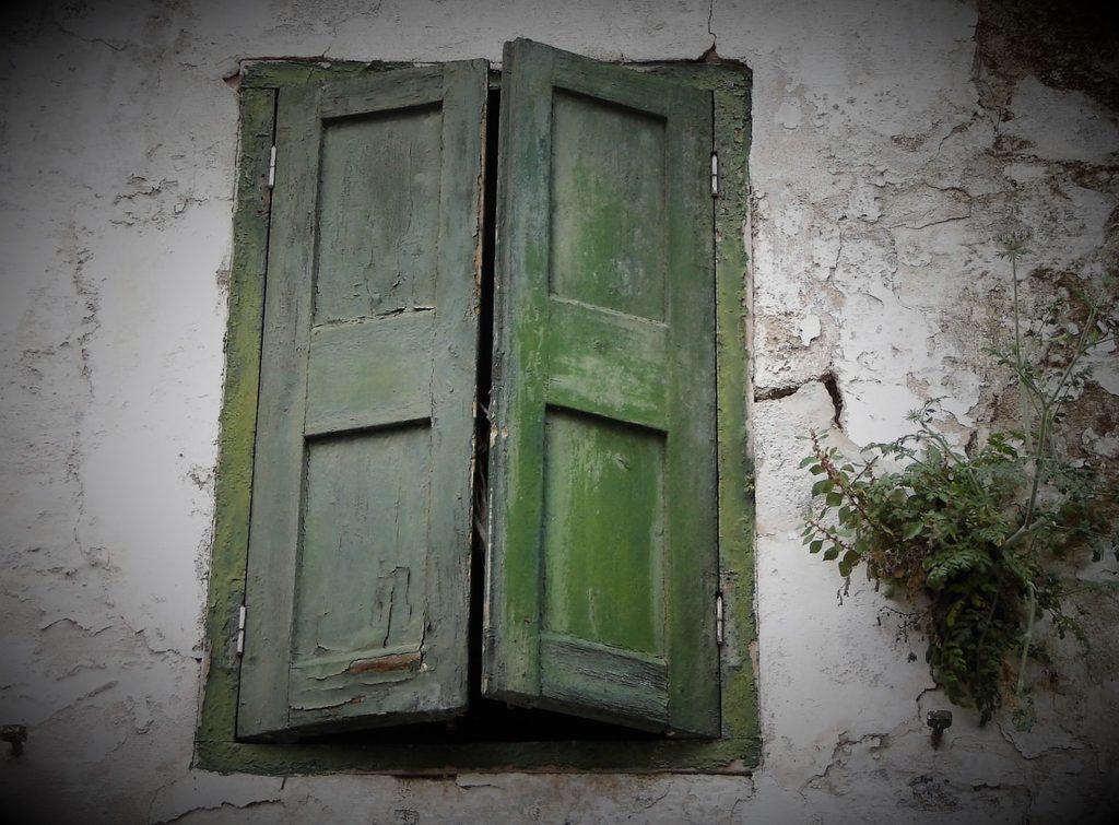 Fenster zum Buch